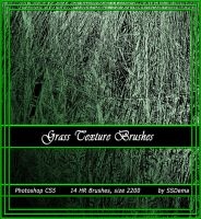 Grass Texture Brushes by analeewon