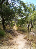 Trail by CAStock