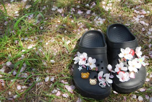 my crocs by cieri