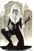 NYCC Black Cat by gravyboy
