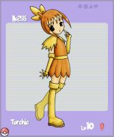 No255 Torchic by PBAnime