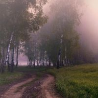 Misty road by KARRR
