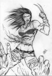 X-23 14 by Dannith
