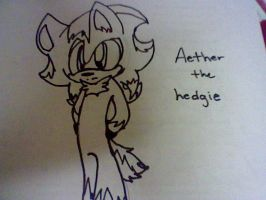 Aether the hedgehog by MagalorSSDestiny16O