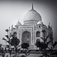 Mahal II by AndrewToPhotography