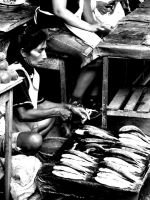 Fish Market Iquitos by Chestbearman