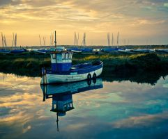 Reflections by grbush