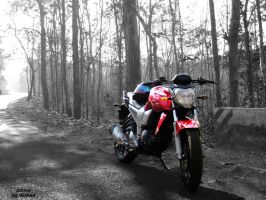 FZ16 by Hoodiboy