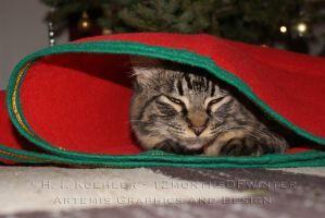 Santa's Little Helper by 12monthsOFwinter
