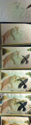 Lynx painting Steps by GreyMind666