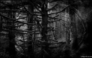 From The Netherworld by indeepsilence