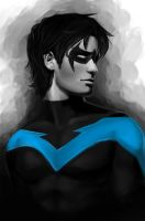 Nightwing by RattledMachine