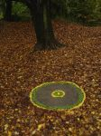 Andy Goldsworthy style by mushroommusic