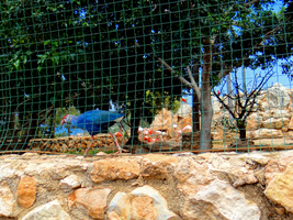 Pafos Zoo -13- by IoannisCleary