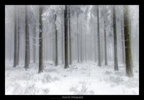 Walking together in my Frozen World by H3ad0n