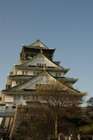 Osaka Castle - Portrait 2 by ricperry1