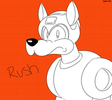 This drawing was RUSH'd by SWN-001