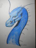 Saphira by Dragon-of-Rivendell