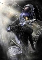 Tali'Zorah vas Normandy by michaellam