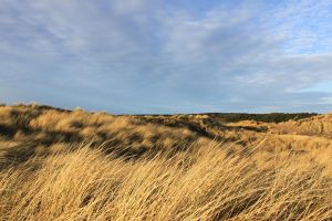 Formby - Dunes 7 by Tasastock