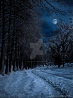 Lonely night (Re-edited) by TwistedSmile88