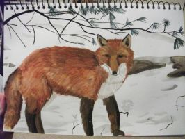 Fox in the snow. by Naiengele