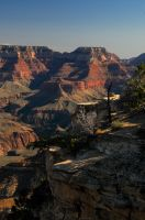 Grand Canyon by Integritydesign