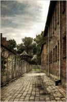 Auschwitz by kuncendorfs
