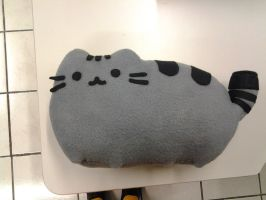 Pusheen by SoraCarballo