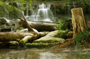 Forest waterfall background by malish551