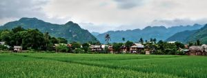 Looking Over The Rice Fields Of Mai Chau by djzontheball