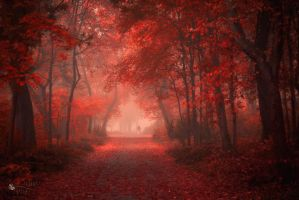 Walk Like Hell by ildiko-neer