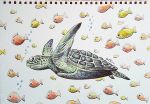 Turtle (#Onthedraw Project) by BenHeine
