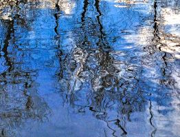 Reflections on the Water - 2 by mudyfrog