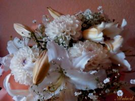 Bouquet of white flowers by Mladavid