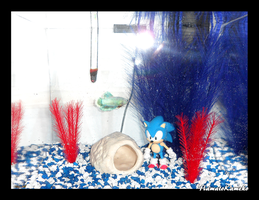 Sonic the Hedgehog Aquarium by InkTheEchidna