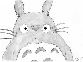 Totoro by DavidWoods