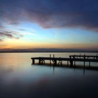 albufera. is anybody in there by janocha