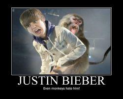 justin bieber, hated by monkey by kai-pachi