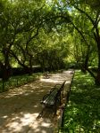230. Conservatory Garden by x-loveyou-x