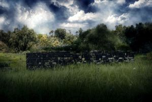 Field _Premade Background by RedHeadLilith