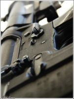 M16A1 by avrin1
