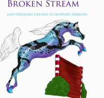 Broken Stream by IbelinArabians