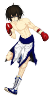 boxer by bellsetty