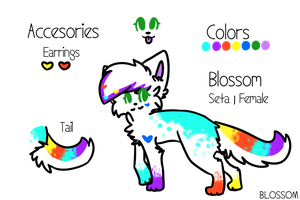 Blossom Reference Sheet - Late 2013 by blossoming-flowers