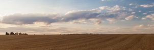 Field in Summer Panorama by Fotostyle-Schindler