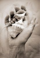 Hand with Two Shells by Proseuche