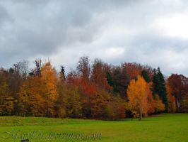 Autumn and his Colors by Maryl0u
