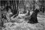 Final Resting Place 1 by Photo-Joker