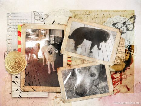 Puppy Photo Collage 1 by Lish7890